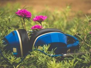Beeidigter Dolmetscher: Kopfhörer im Gras